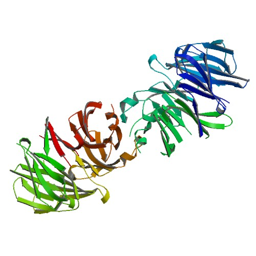 Crystal structure of LRRK2 WD40 domain dimer