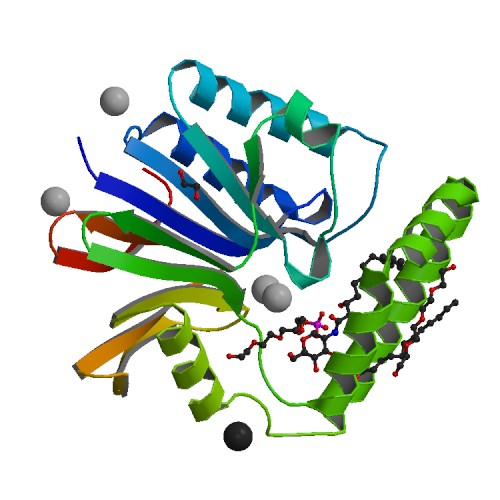 Crystal Structure of the Klebsiella pneumoniae LpxH-lipid X complex