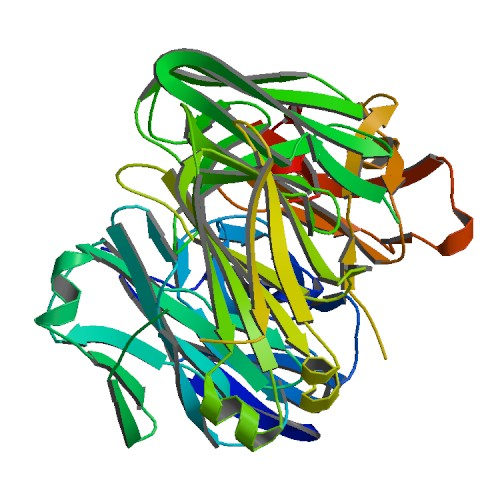 Crystal structure of ZIKV-116 Fab in complex with ZIKV envelope DIII
