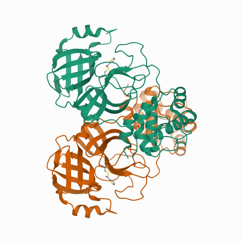 Crystal structure of SARS-CoV-2 3CL protease in complex with MAC5576