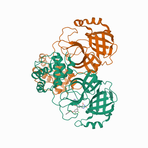 CRYSTAL STRUCTURE OF THE SARS-COV-2(2019-NCOV) MAIN PROTEASE IN COMPLEX WITH COMPOUND 23