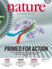Structure on the Cover of Nature
